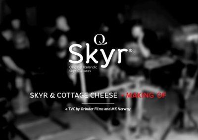 Q-Skyr BTS